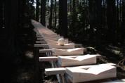 「森の木琴」